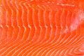 Smoked salmon background a of fresh Royalty Free Stock Photo
