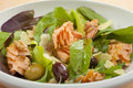 Smoked Salmon Salad with Lettuce and Olives Royalty Free Stock Image