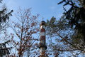 Smokestack this is high between trees Stock Photography