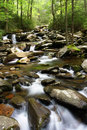 Smokey Mountains Creek Royalty Free Stock Photo
