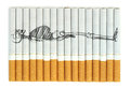 Smoking kills conceptual image on cigarettes Stock Images