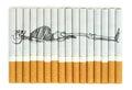 Smoking kills conceptual image on cigarettes Stock Images