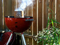 Smoking Red Grill with Flowers Royalty Free Stock Photos