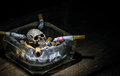 Smoking to death still life skull and cigarette in glass ashtray when people smoke cigarette and get toxin very dangerous in body Stock Image