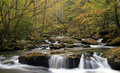 Smoky Mountain Fall Stream Royalty Free Stock Photo