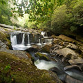 Smoky Mountain Forest and Waterfall Royalty Free Stock Image