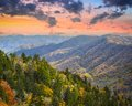 Smoky mountains autumn morning in the national park Royalty Free Stock Photos