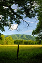 Smoky mountains cades cove in late spring a scenic view of great national park tennessee usa Stock Photos