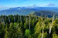 Smoky mountains view from the observation deck of clingman s dome in the great Stock Image