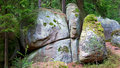 Smoothed granite rocks at the hill moor blockheide woodquarter lower austria austria Royalty Free Stock Photo