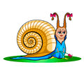 Snail сartoon illustration of a cute Royalty Free Stock Image