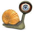 Snail (Blue Color Eye) Royalty Free Stock Photo