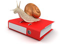 Snail and document clipping path included image with Stock Photo