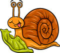 Snail and lettuce cartoon illustration of funny mollusk with leaf Royalty Free Stock Photo