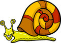 Snail mollusk cartoon illustration Stock Images