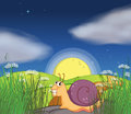 A snail at the road illustration of Royalty Free Stock Photos