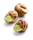Snails with butter and parsley Stock Images