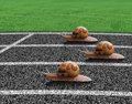 Snails race on sports track Royalty Free Stock Photo