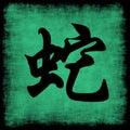 Snake Chinese Zodiac Stock Photos