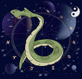 Snake horoscope animal sign on a dark background with signs Stock Image