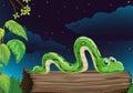 A snake Royalty Free Stock Photo