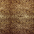 Snake leather skin background and texture Royalty Free Stock Images