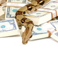 Snake money Royalty Free Stock Photography