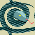 Snake seamless pattern. Longest reptile Python. Vector ornament