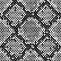 Snake Skin Colorful Animal Gray Seamless Pattern Royalty Free Stock Photo