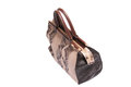 Snake skin leather bag see my other works in portfolio Royalty Free Stock Image