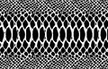 Snake skin pattern texture repeating seamless monochrome black & white. Vector. Texture snake. Fashionable print. Fashion and styl