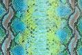 Piel textura