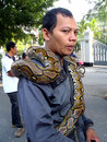 Snakes citizens interact with the in the environmental campaign in the city of solo central java indonesia Stock Images