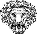 Snarling lion head vector drawing of a the antique architectural detail in form of the Royalty Free Stock Images