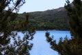 Sneak peek a through the trees to the river and mountains Stock Photos