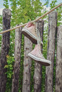Sneakers hanging on a rope in the garden. Royalty Free Stock Photo