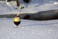 Snifter in the snow filled with a home brewed black ipa Royalty Free Stock Photos