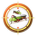 Sniper target with grasshopper Stock Photos