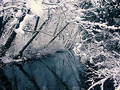 Snofall and Creek (view 3) Royalty Free Stock Photos