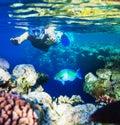 Snorkel Royalty Free Stock Photo