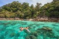 Snorkel diving at koh lipe of andaman sea thailand Royalty Free Stock Photography