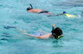 Snorkeling in aitutaki lagoon cook islands man and women couple Royalty Free Stock Photo