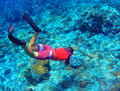 Snorkeling man dives to sea bottom. Young coral reef in deep blue water Royalty Free Stock Photo