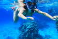 Snorkeling in red Sea Stock Image