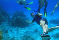 Snorkeling in Red Sea Stock Photography