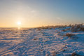 Snow on the beach cold and beautiful day at a in denmark is covered in sea is frozen Royalty Free Stock Photography
