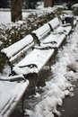 Snow on benches row of wooden in city park covered with Stock Photos