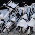 Snow on bicycles Royalty Free Stock Image