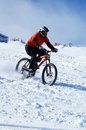 Snow Biker Royalty Free Stock Image