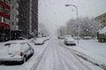 Snow calamity in bratislava slovakia huge snow flakes th january snowflakes Royalty Free Stock Photo